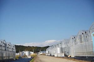 宮崎太陽農園